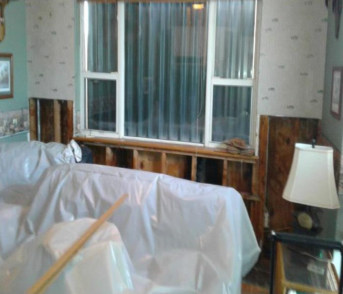 Mold Damage In Cocoa Before