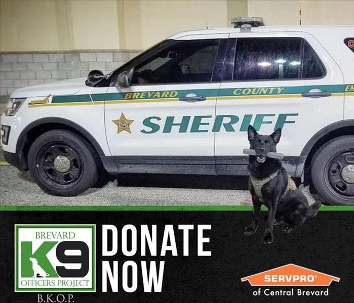 A Brevard Sheriff vehicle with a dog holding a bone. With the words K-9