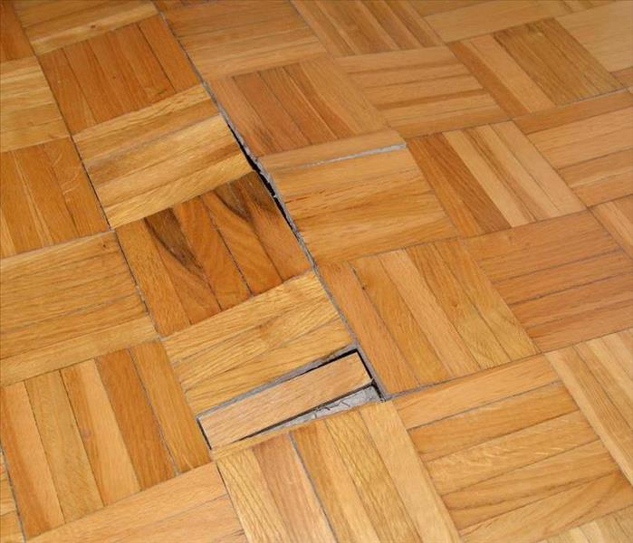 Water Damage Buckling Under Pressure: What Water Damage Does to Hardwood Floors in Your Rockledge Home