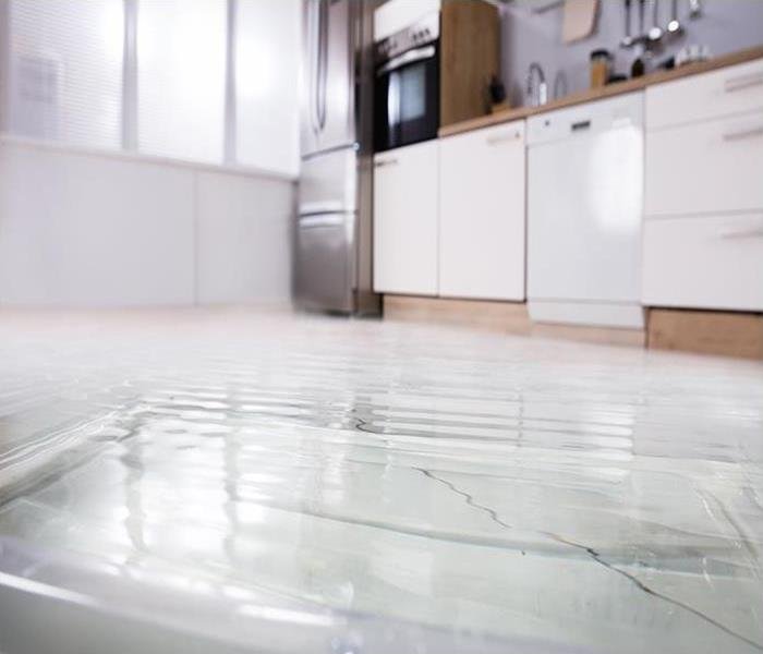 Water Damage How Water Removal Services Can Help You Remediate Your Cocoa Beach Property