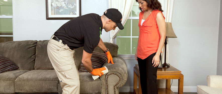 Cocoa, FL carpet upholstery cleaning